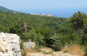 """""""Pustia"""" Viglei. În depărtare se vede Marea Lavră, prima şi cea mai importantă mănăstire în ierarhia Muntelui, de care aparţine şi schitul românesc Prodromu"""