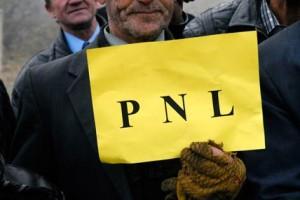 PNL, de Raul Stef