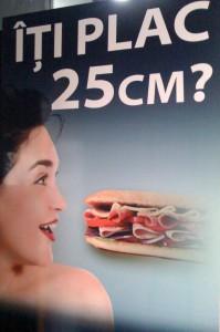 sandvici