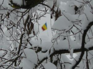 Onor la iarnă
